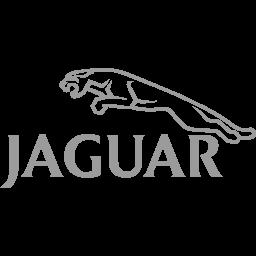 Diagnoza auto Jaguar